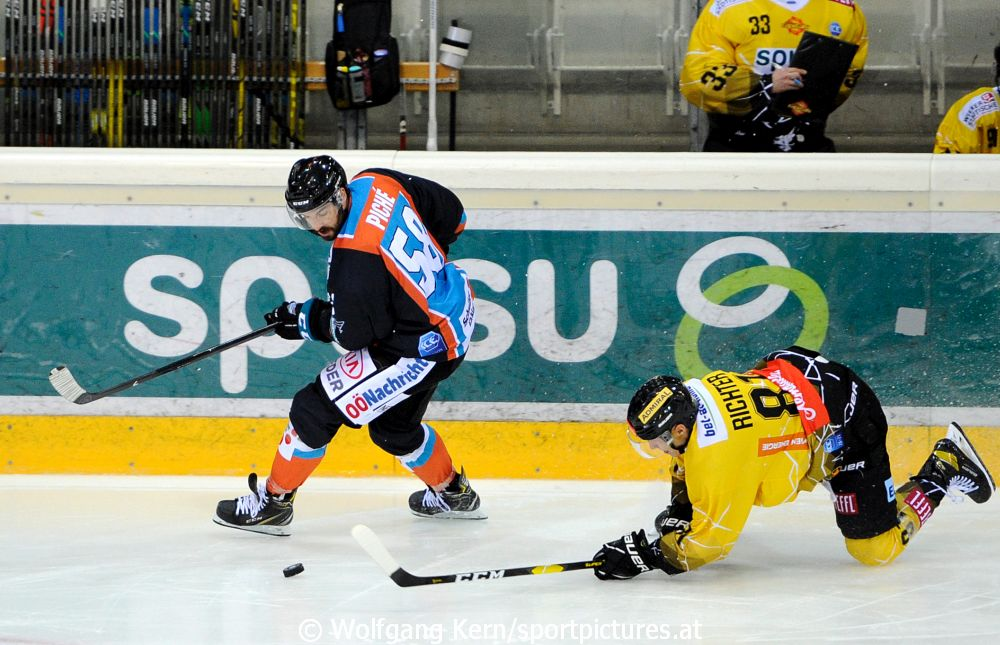 Vienna Capitals, Black Wings Linz, aus der Albert Schultz Halle, EBEL